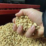 1. Graules, medienos granules, wood pallets, wood pellets6